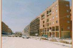 Gennaio 1995: rifinitura parcheggio.