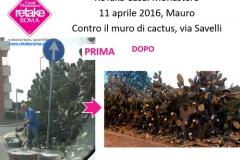 ReTakeCM_cactus_11apr16