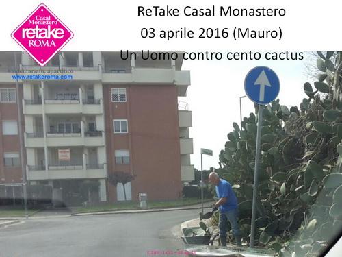 ReTakeCM_cactus_03 apr16