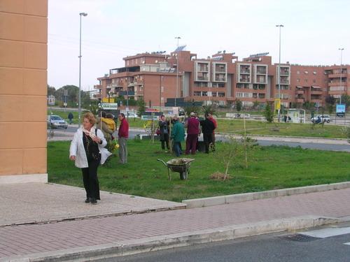 alberi2007_02