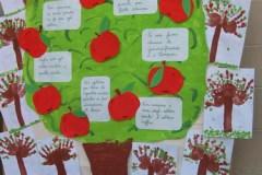 alberi2008_4