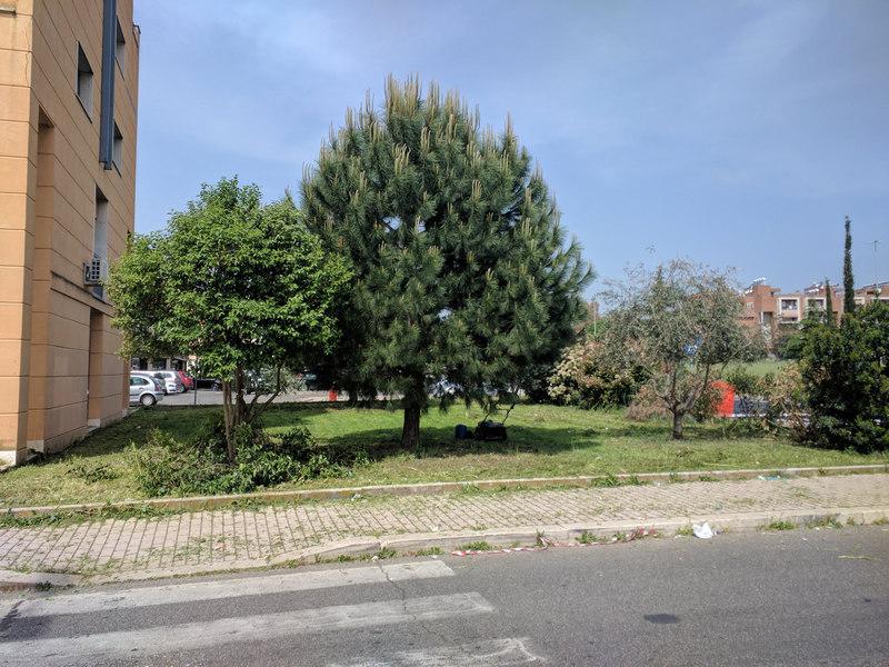 Image00004-1