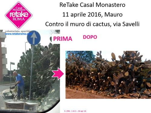 ReTakeCM_cactus_11apr16_resize