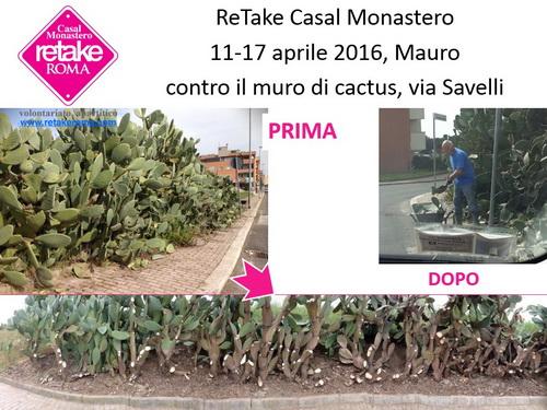 ReTakeCM_cactus_17apr16_1_resize