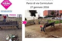 RetakeCM_corniculum_27gen16_2