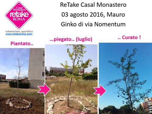 ReTakeCM_ginko_03ago16_resize