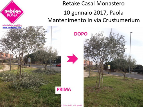 RetakeCM_crustum_10gen17_1_resize