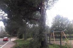 Giardini_08